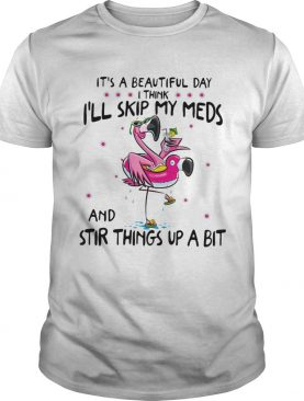 Flamingos its beautiful day I think Ill skip my meds and stir things shirt