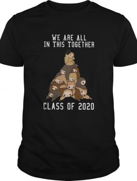 We Are All In This Together Class Of 2020 shirt