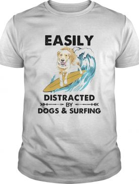 Dog labrador easily distracted by dogs and surfing shirt