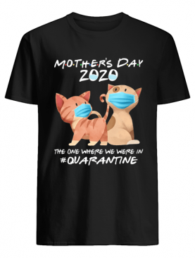 Mother's day 2020 the one where we were in quarantine Cat mask shirt