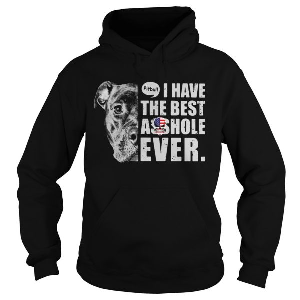 Pitbull i have the best asshole ever american flag  Hoodie