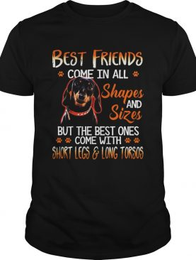Dachshund Best Friends Come In All Shapes And Sizes shirt