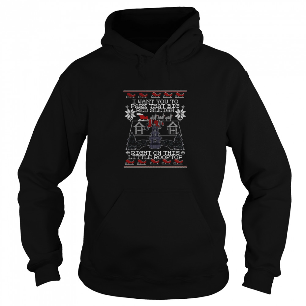 I Want You To Park That Big Red Sleigh Right On This Little Rooftop Ugly Christmas  Unisex Hoodie