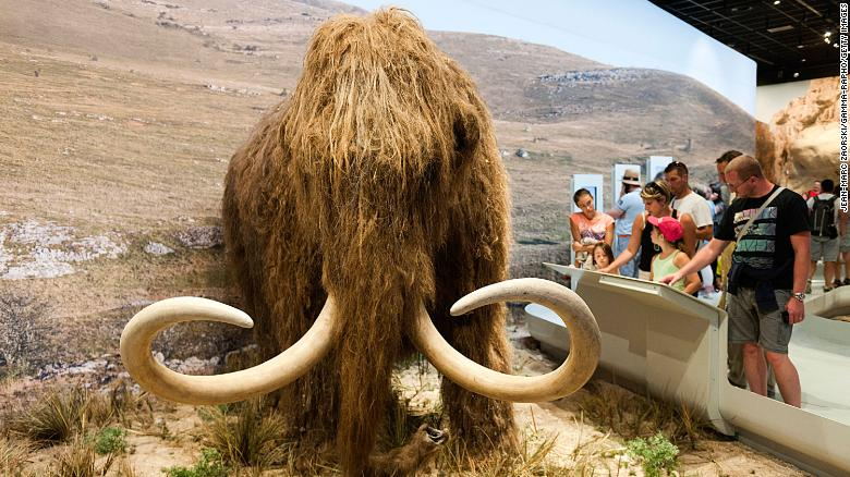 Scientists want to resurrect the woolly mammoth. They just got $15 million to make it happen